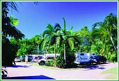 Tropical Hibiscus Caravan Park - WA Accommodation