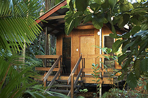 Cape Trib Beach House - WA Accommodation