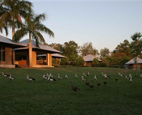 Feathers Sanctuary - WA Accommodation