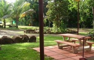 Virginia Heliconia Farm - WA Accommodation