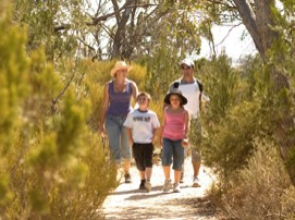 Long Island Caravan Park Cabins - WA Accommodation