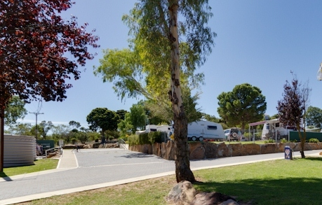 Avoca Dell Caravan Park - WA Accommodation