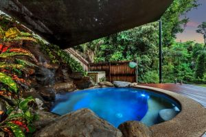 Platypus Springs Rainforest Retreat - WA Accommodation