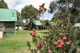 Derwent Bridge Chalets and Studios - WA Accommodation