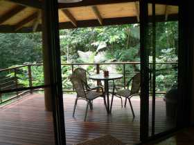 Cape Trib Exotic Fruit Farm Bed and Breakfast - WA Accommodation