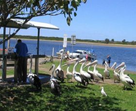 Mountain View Caravan and Mobile Home Village - WA Accommodation