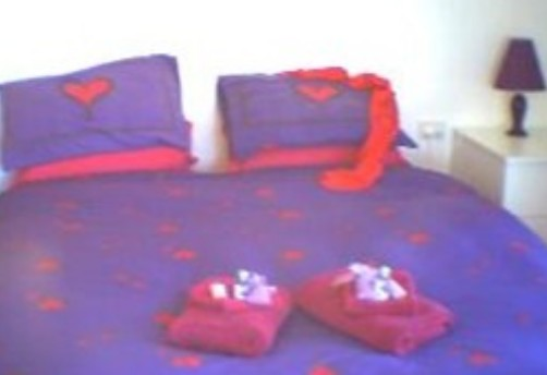 Aloomba Lavender - Accommodation - WA Accommodation