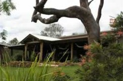 The Hollow Log Country Retreat - WA Accommodation