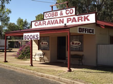 Cobb  Co Caravan Park - WA Accommodation