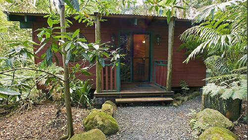 Springbrook Lyrebird Retreat - WA Accommodation