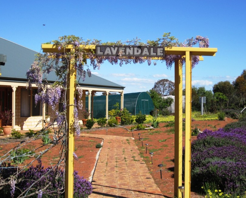 Lavendale Farmstay and Cottages - WA Accommodation
