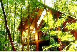 The Canopy Treehouses - WA Accommodation