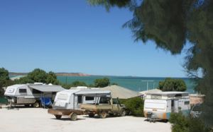Blue Dolphin Caravan Park and Holiday Village - WA Accommodation