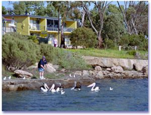 Almonta Holiday Apartments - WA Accommodation