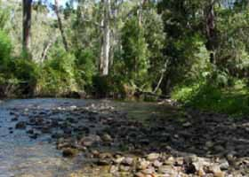 River Rest Country Cottage - WA Accommodation