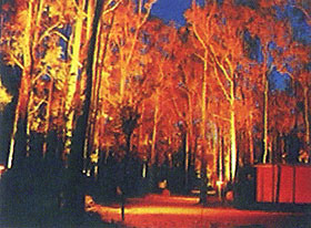 Dwellingup Chalet amp Caravan Park - WA Accommodation