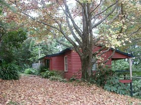 Turkeys Nest Rainforest Cottage - WA Accommodation