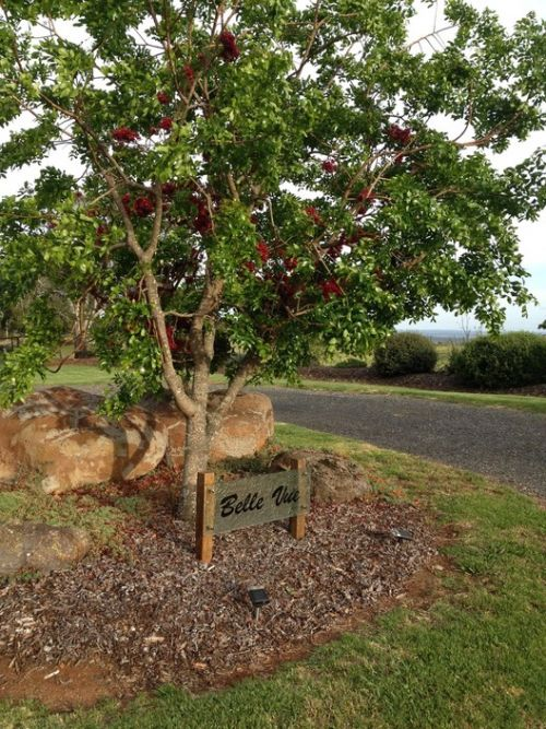 Belle Vue Studio - WA Accommodation