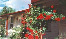 Rose Cottage Bed And Breakfast - WA Accommodation