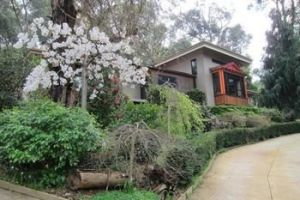 Cherryblossom BampB - WA Accommodation