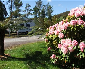 Zeehan Bush Camp  and Caravan Park - WA Accommodation