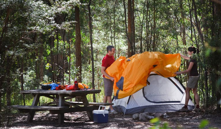 Bald Rock campground and picnic area - WA Accommodation