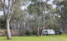 Culcairn Caravan Park - WA Accommodation
