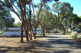 Wycheproof Caravan Park - WA Accommodation