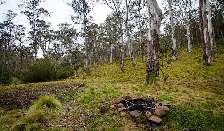 Gummi Falls campground - WA Accommodation