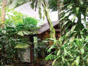 Heritage Lodge and Spa - In the Daintree - WA Accommodation