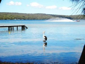 Dungowan Waterfront  Accommodation - WA Accommodation