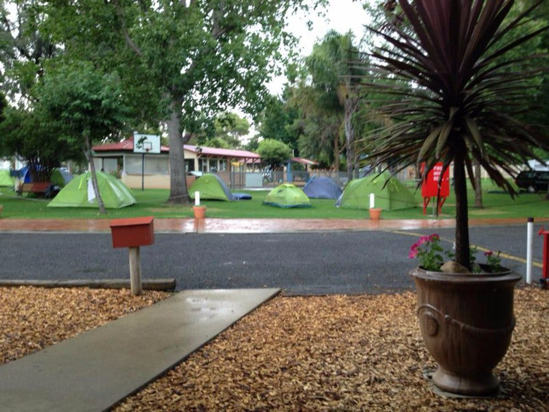 Young Caravan Tourist Park - WA Accommodation