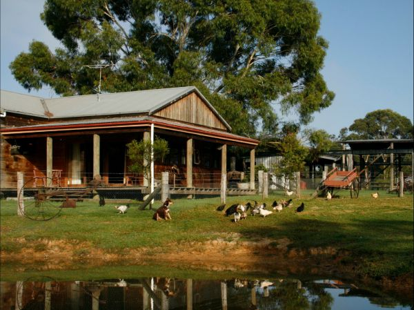 Tobruk Sydney Farm Stay - WA Accommodation