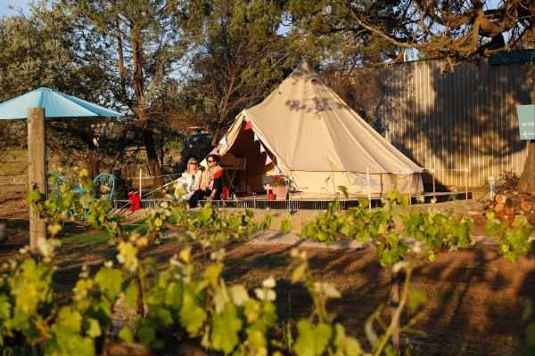 Grapevine Glamping - WA Accommodation