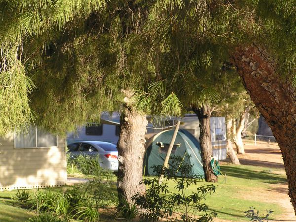 Barmera North Lake Caravan Park - WA Accommodation