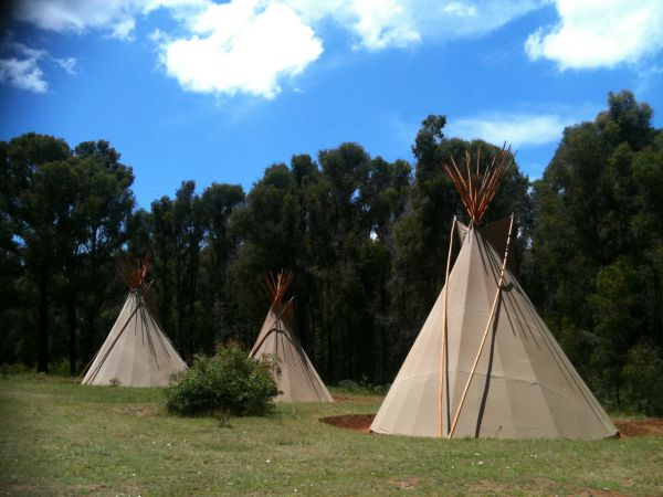 Kinglake Forest Adventures Camp