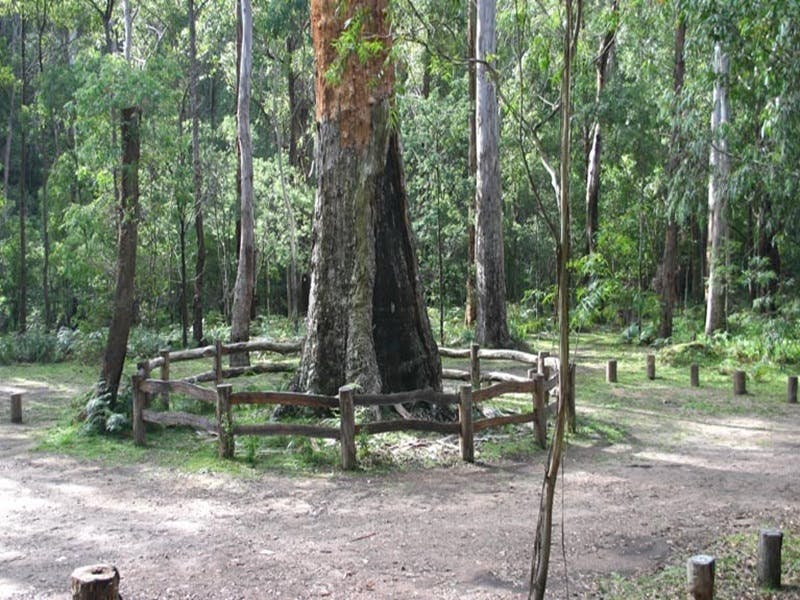 Six Mile Creek campground - WA Accommodation