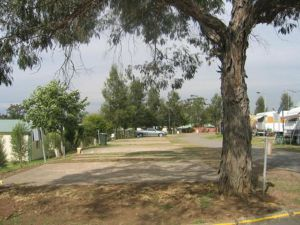 Country Acres Caravan Park - WA Accommodation