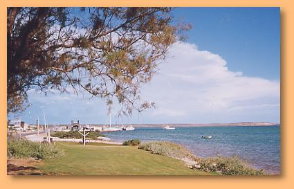 Denham Seaside Tourist Village - WA Accommodation