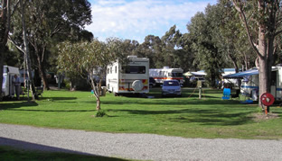 Pinjarra Caravan Park - WA Accommodation