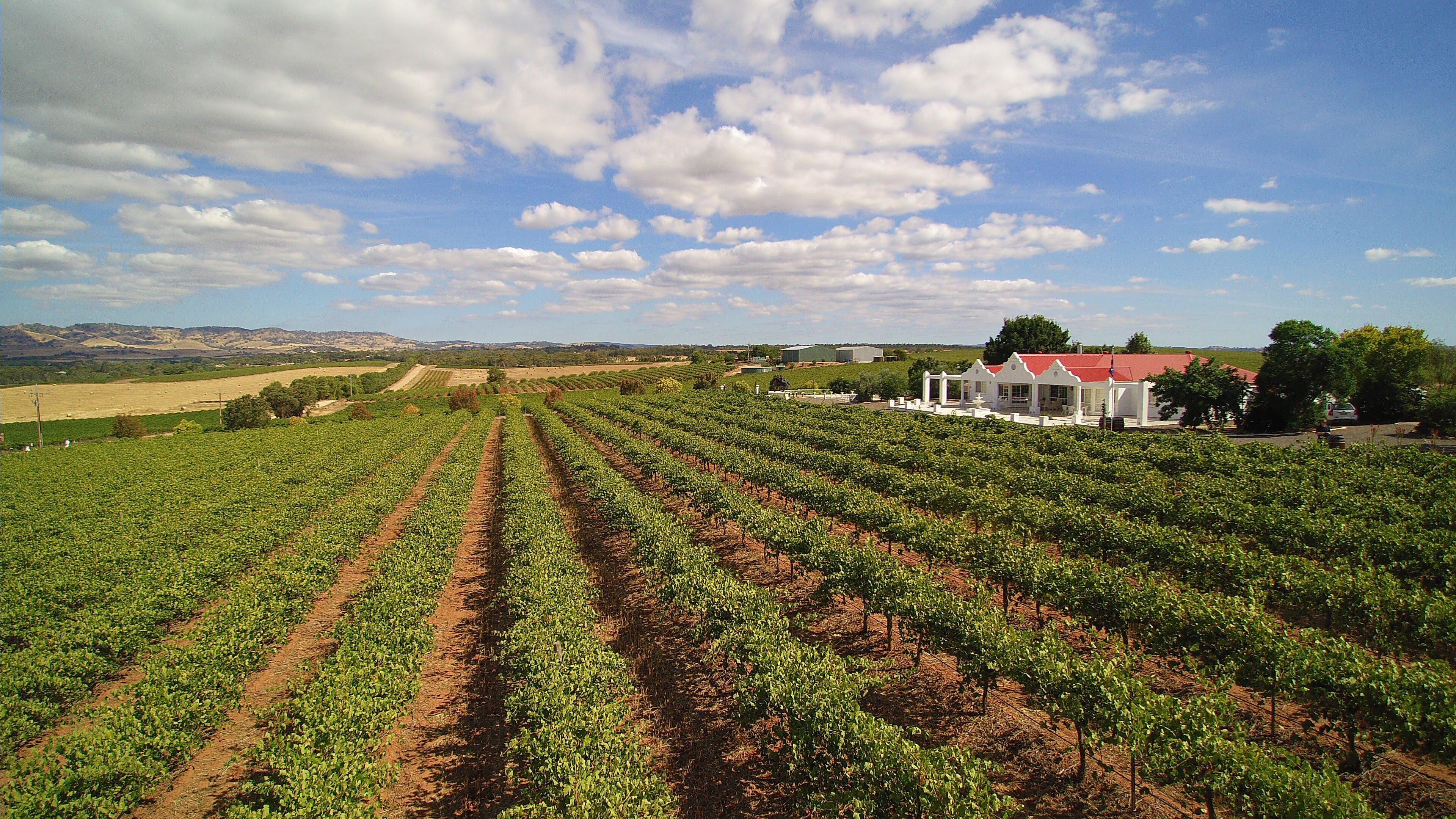 1837 Barossa Luxury Vineyard Cottages - WA Accommodation