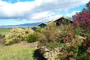 Black Cockatoo Cottages - WA Accommodation