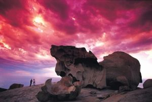 Kangaroo Island Adventure Tour 2 day/1 night - WA Accommodation