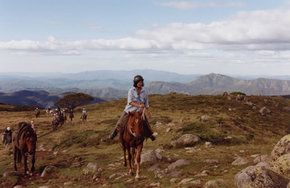 High Country Horses - WA Accommodation