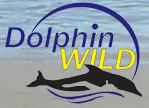 Dolphin Wild - WA Accommodation
