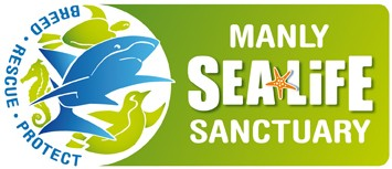 Manly SEA LIFE Sanctuary - WA Accommodation