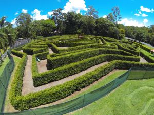 Bellingham Maze - WA Accommodation