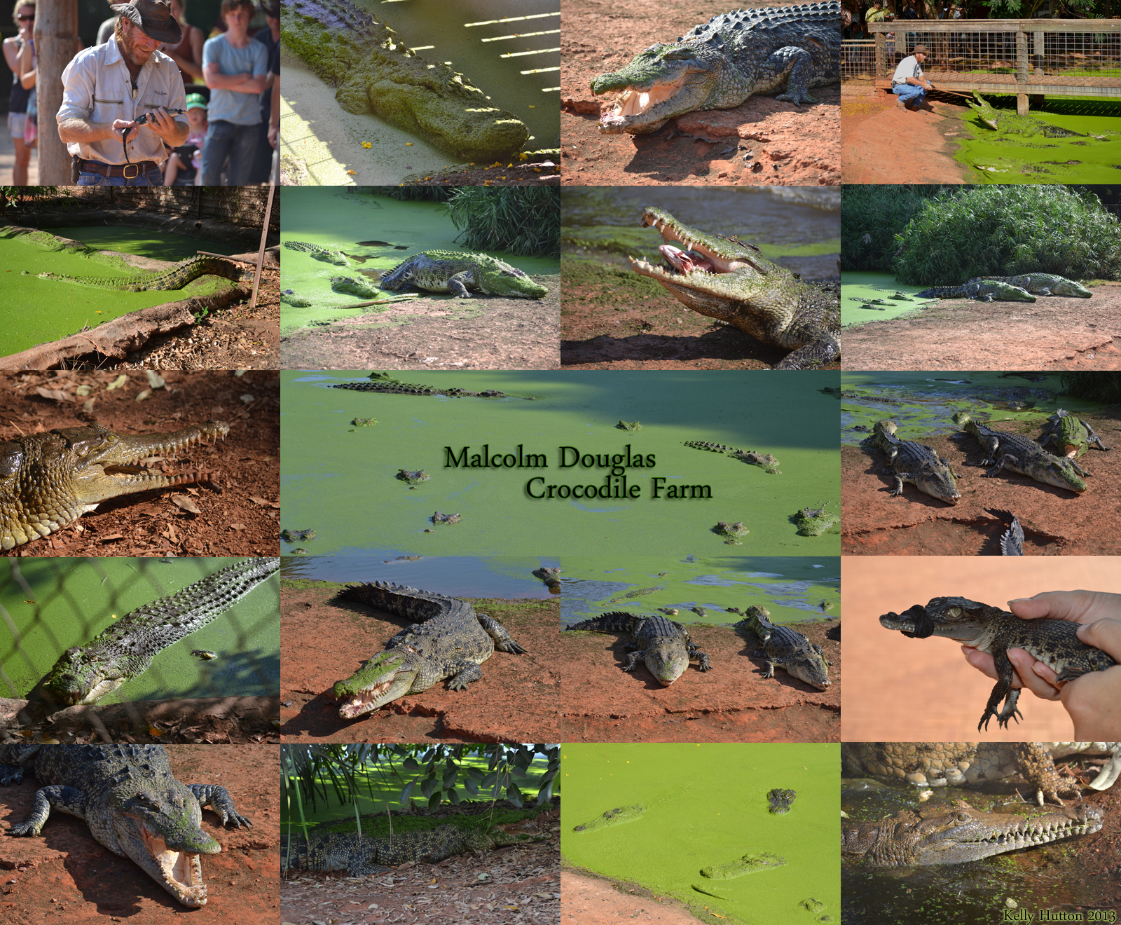 The Malcolm Douglas Crocodile Park - WA Accommodation