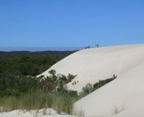 Yeagerup Sand Dunes - WA Accommodation