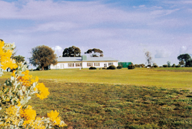 Lucindale Country Club - WA Accommodation